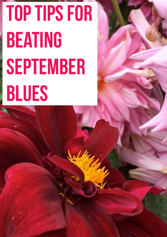 Top Tips For Beating September Blues.jpg